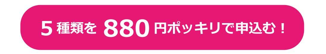 5種類を880円ポッキリで申し込む!